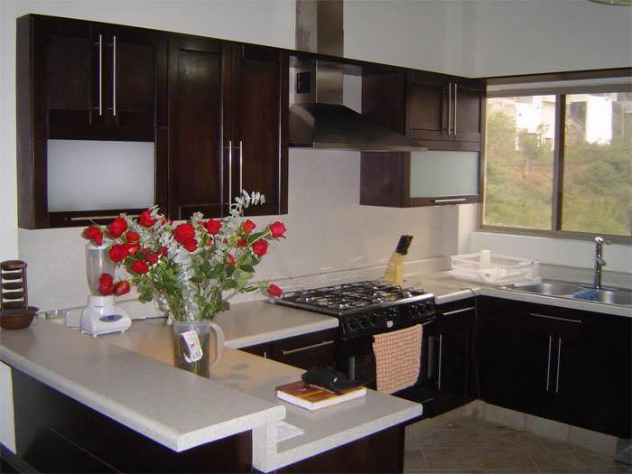 Como pintar una cocina integral de madera color chocolate - Como pintar una cocina ...